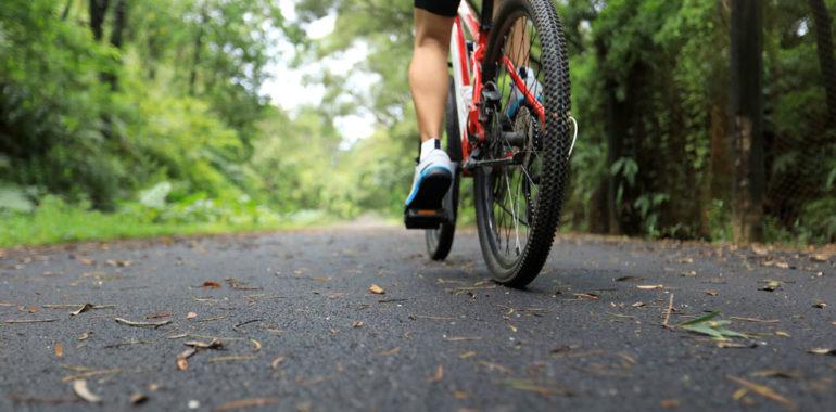 borsello mountain bike